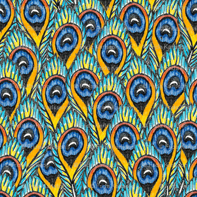 Peacock feathers #1