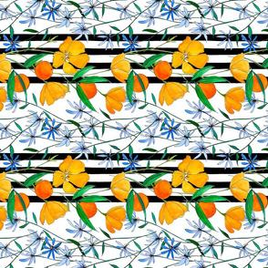 August Stripe