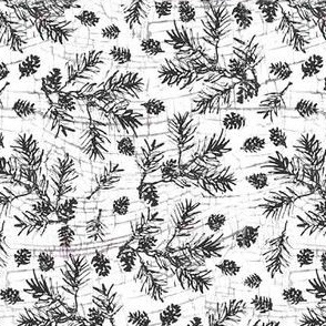 Jamie_Kalvestran_Woodland_Holiday_Pine_Branch
