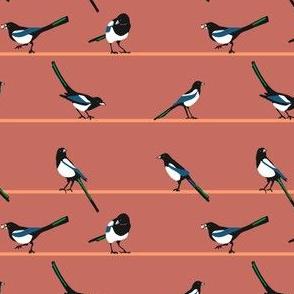 mischief of magpies 3  [mauve]