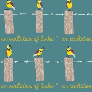 EXALTATION of larks 1