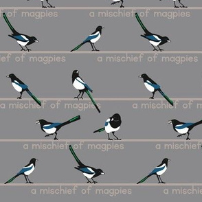 MISCHIEF of magpies 1
