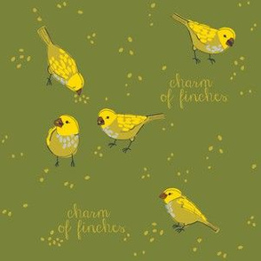 CHARM of finches 2