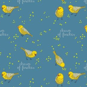 CHARM of finches 4