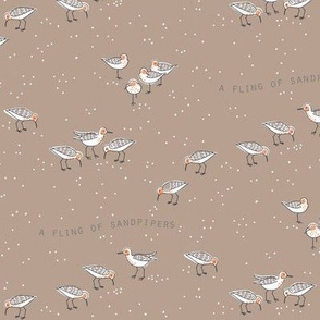 FLING of sandpipers 3