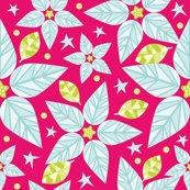Poinsettias_white_poinsettias_shop_thumb