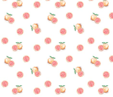 Grapefruit_4x4_shop_preview