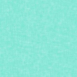 Solid Aqua Linen