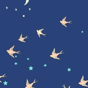 Ahoy night flight (blue)