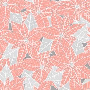 Endless Poinsettias - Pink