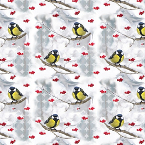 Winter pattern Great Tit