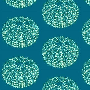 Urchins on Blue