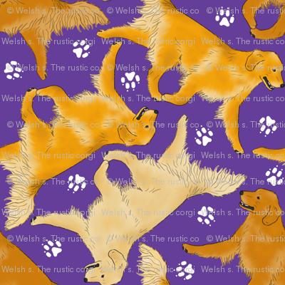 Trotting Golden Retrievers and paw prints - purple