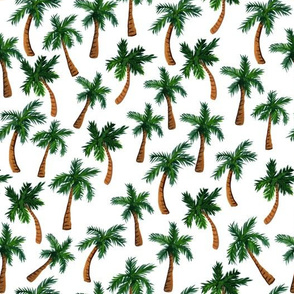 Palm Tree Print (Medium)
