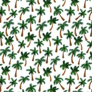 Palm Tree Print (Small)