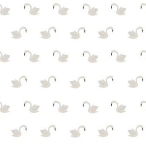 tiny swans