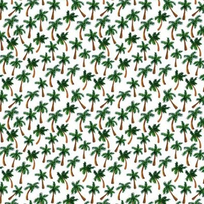 Palm Tree Print (Tiny)