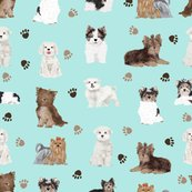 Rtoy_dogs_paws_mint_shop_thumb