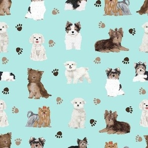 chocolate yorkie, maltese, biewer terriers cute toy dogs fabric cute toy breeds fabric cute dog breed fabric