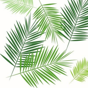 Palm leaf - green on white greenery tropical Palm leaves Palm tree