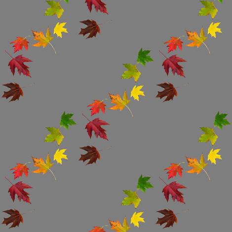 Rainbow Maple Leaves on Grey fabric by zsmama on Spoonflower - custom fabric