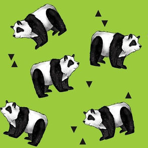 Pandas Everywhere! on green