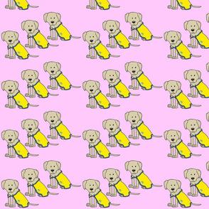 LTDS_Parker_cape_Pink