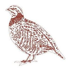 Partridges (mirrored)