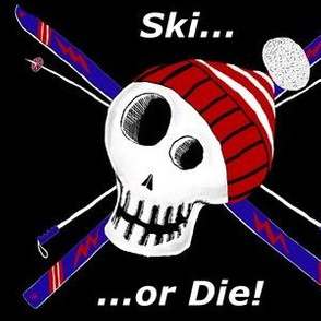 Ski or Die! large scale, red white blue black