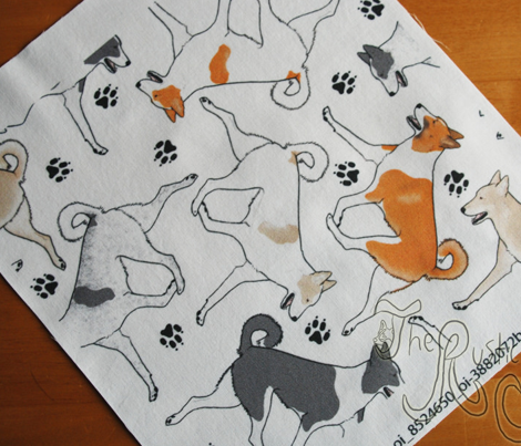 Trotting Canaan dogs and paw prints - white