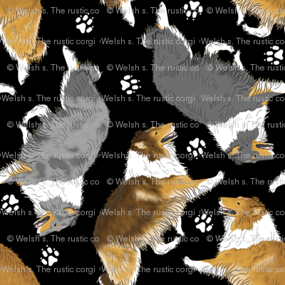 Trotting rough coated Collies and paw prints - black