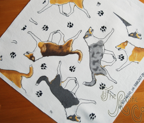 Trotting smooth coated Collies and paw prints - white