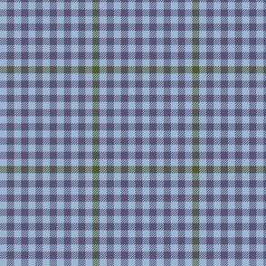 tartan check - autumn blue