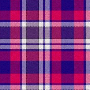 Bisexual Plaid