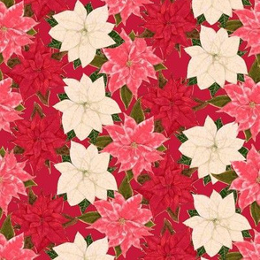 Red White and Pink Poinsettias with hint of fake gilt on red