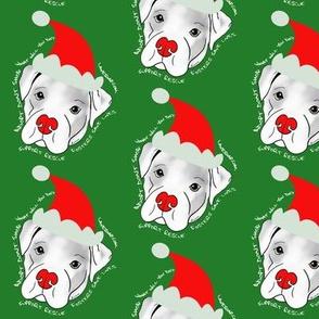Santa Pitbull Rescue