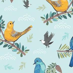 Wild Adventures - Birds of North America