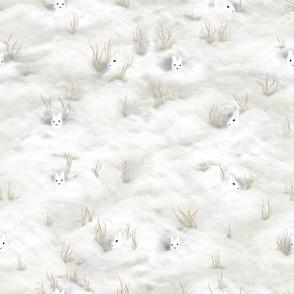 Alpine Hare-iday