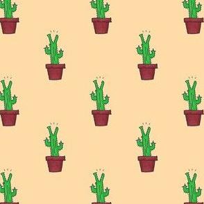 Cactus Crocs - Orange