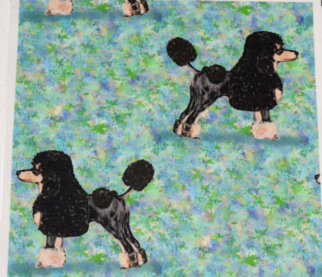 Black and Tan Phantom Poodle on Blue Green
