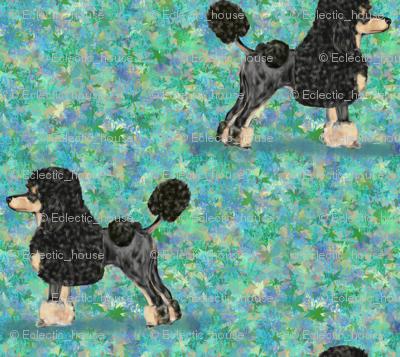 Black and Tan Phantom Poodle on Blue Green