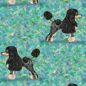 Black_and_tan_phantom_poodle_on_blue_green_rev_shop_thumb