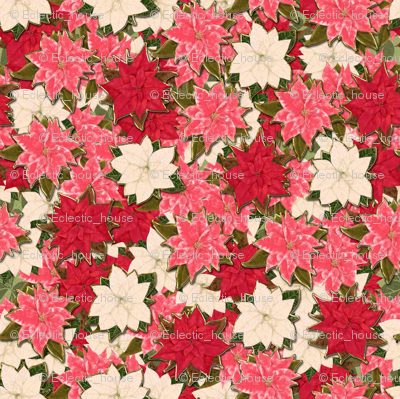 Pink Red and White Poinsettia scatter with hint of fake gold