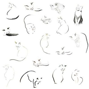 Many minimalist cats