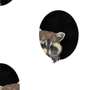 Socially Anxious Raccoon