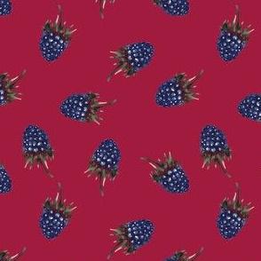 Wildberry on dark pink