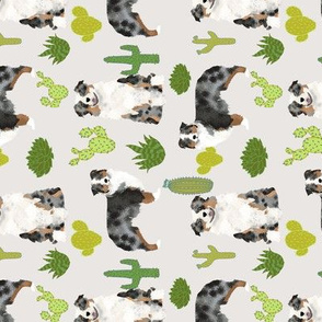 australian shepherds dog cactus fabric cacti fabric australian shepherds fabric cute dogs