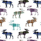 Plaid Moose III // Sylvan Shoppe Collection