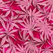 Rrrpassionpinkcannabis_4spf_shop_thumb