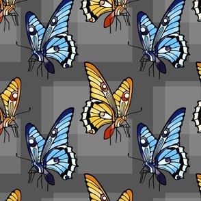 Dreary Day Butterflies